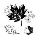Razítka - Listy a žalud