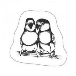 Scrapbook - Transparentní razítko Papoušci