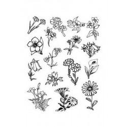 Razítka - Květiny