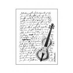 Scrapbook - Viola a písmo
