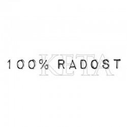 scrap - 100% radost
