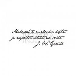Citát - Goethe