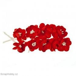 Kytičky papírové Třešňové - 10ks - Červené