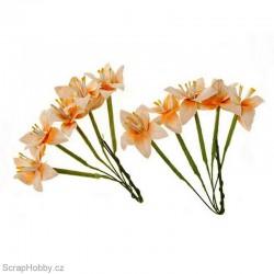 Sada kytiček - Lilie - broskvové - 10ks