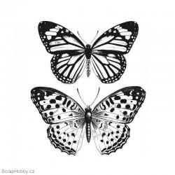 Motýlí sbírka
