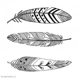 Ptačí pera