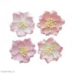 Kytičky z papíru - Gardenie - bílo-růžová - 4ks