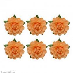 Sada kytiček - Čajové růže - 6ks - oranžové