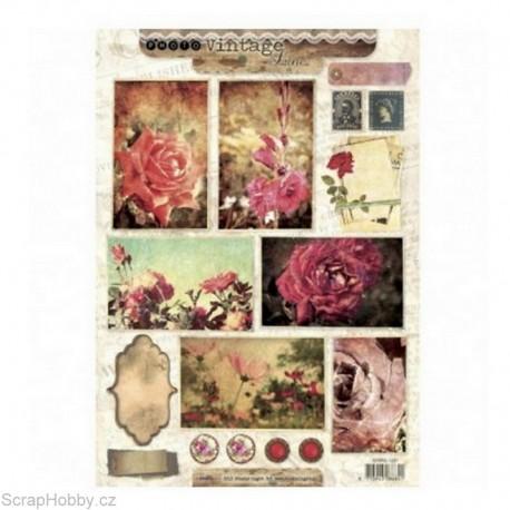 Obrázky - Květiny II.