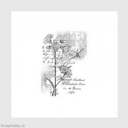 Květinka, písmo, vlaštovka