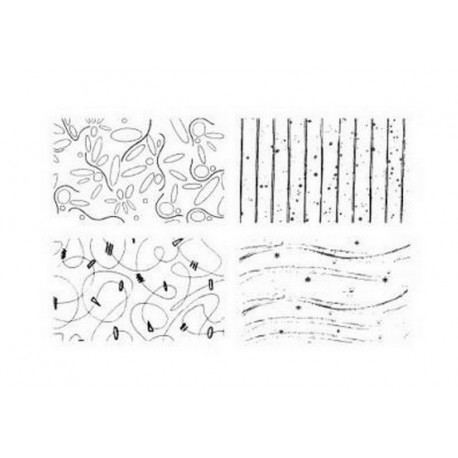 Scrapbooking - Razítka - Ornamenty